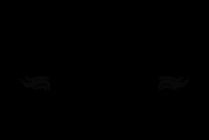 neapolitan express logo